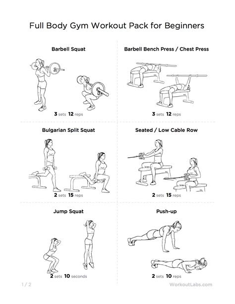 full body gym workout pack  beginners