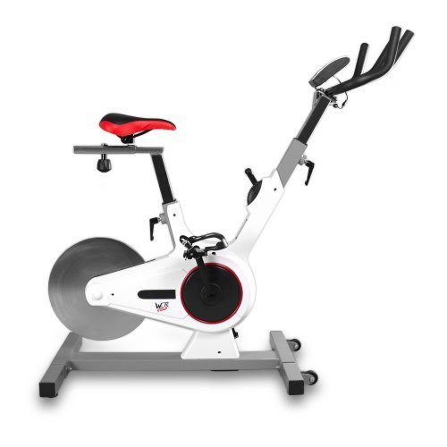 Aerobic Training Cycle Magnetic Exercise Bike Fitness Cardio Workout Home Cycling Racing Machine