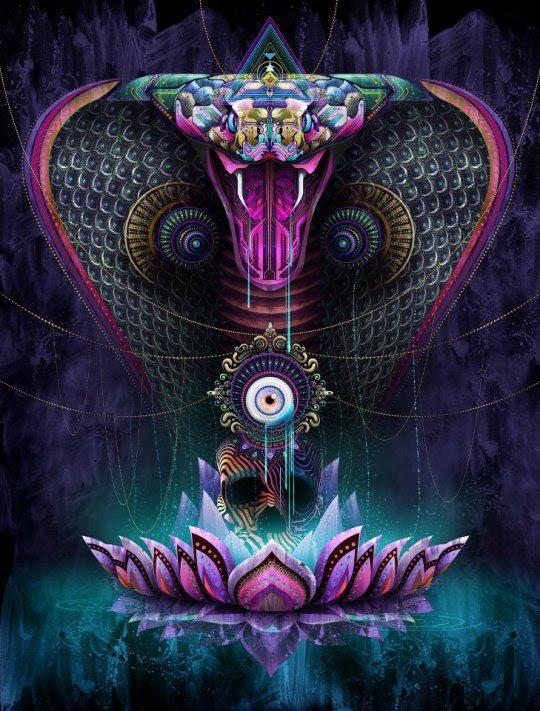 http://stopmensonges.com/wp-content/uploads/2013/11/cobras.jpg