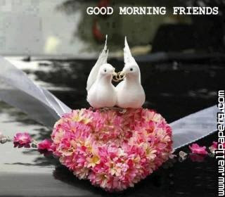 Download Good Morning Picture Of Love Good Morning Wallpapers