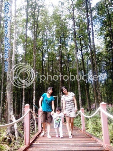 photo 13VisitingHutanPayaLautMatangOnceAgain_zps54d4edfe.jpg