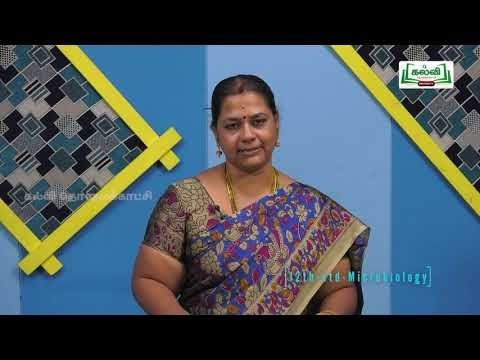12th Micro Unit 1 Biology Development of Micro Biology Kalvi TV