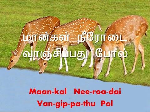 As The Deer Panteth Lyrics In Tamil