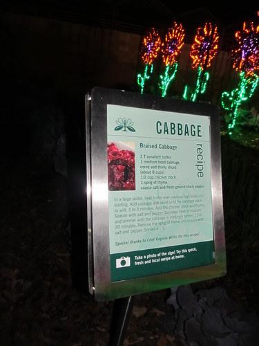 Braised cabbage, under the lights