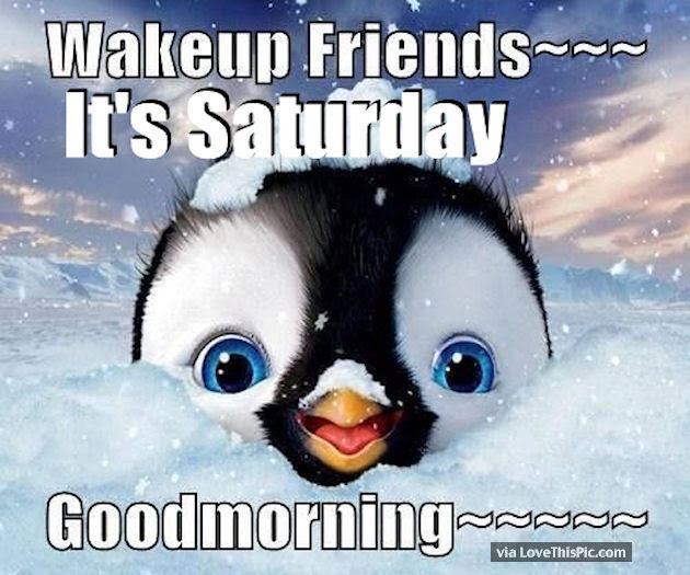 Wakeup Friends Its Saturday Good Morning Pictures Photos And