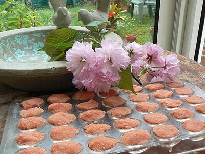 oeufs biscuit rose moulés.jpg