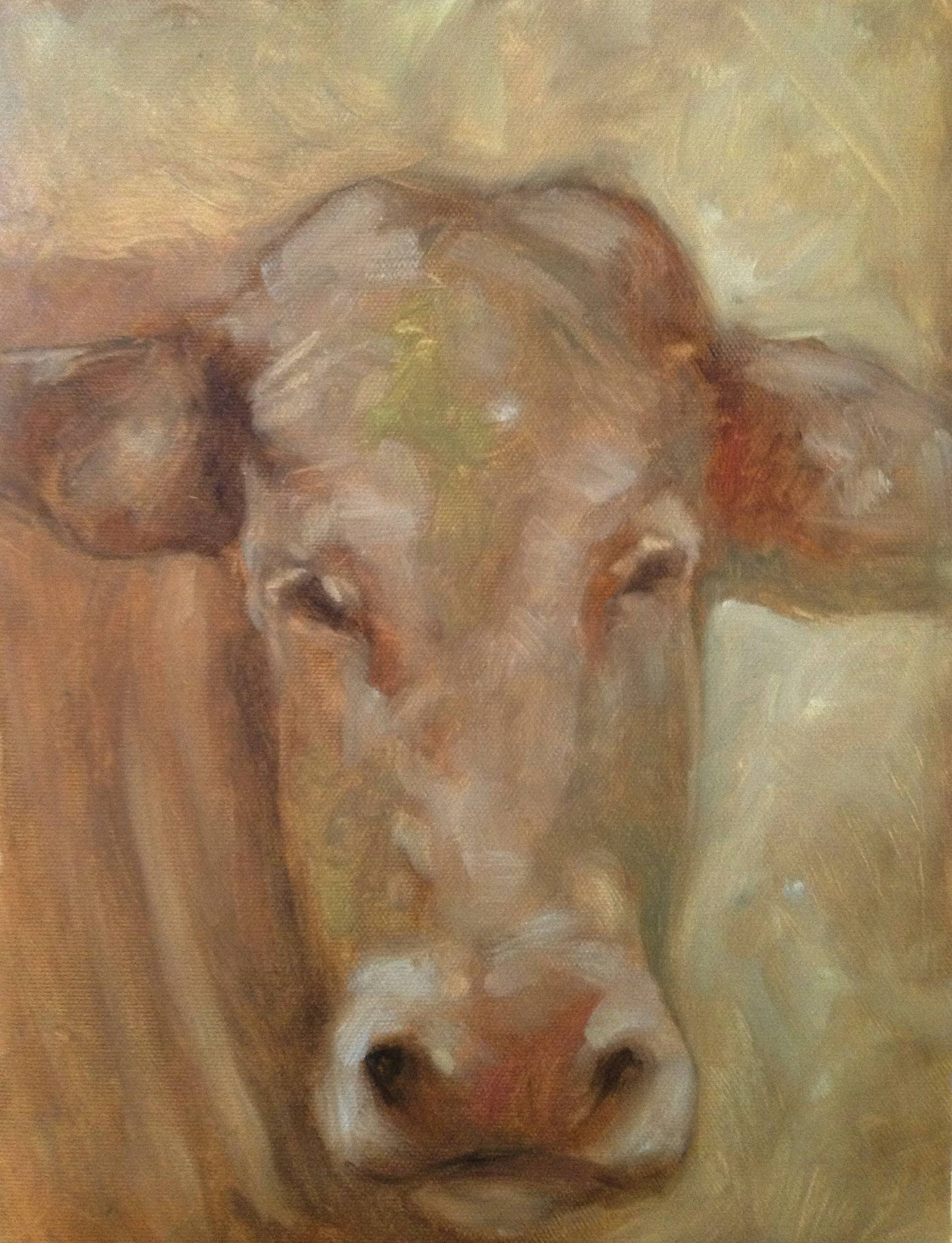 Oil Sketch of a cow by kevin gough