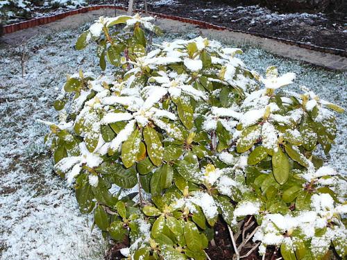 winterlicher Ostersonntag 2008 (02)