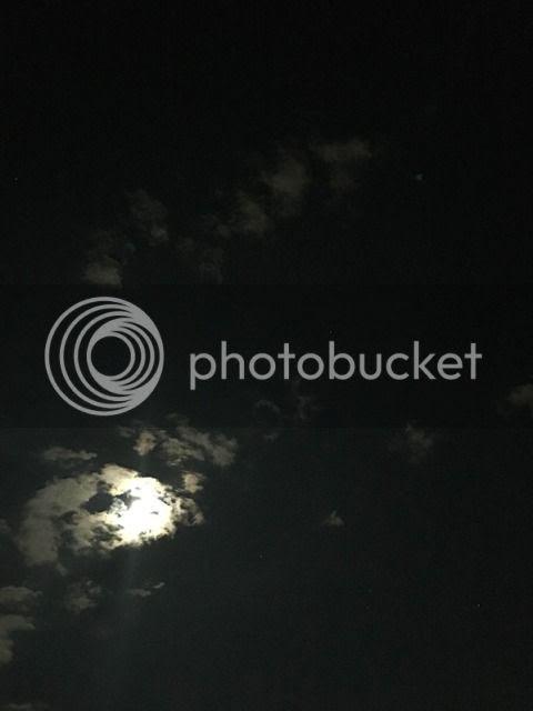 photo IMG_1684.jpg