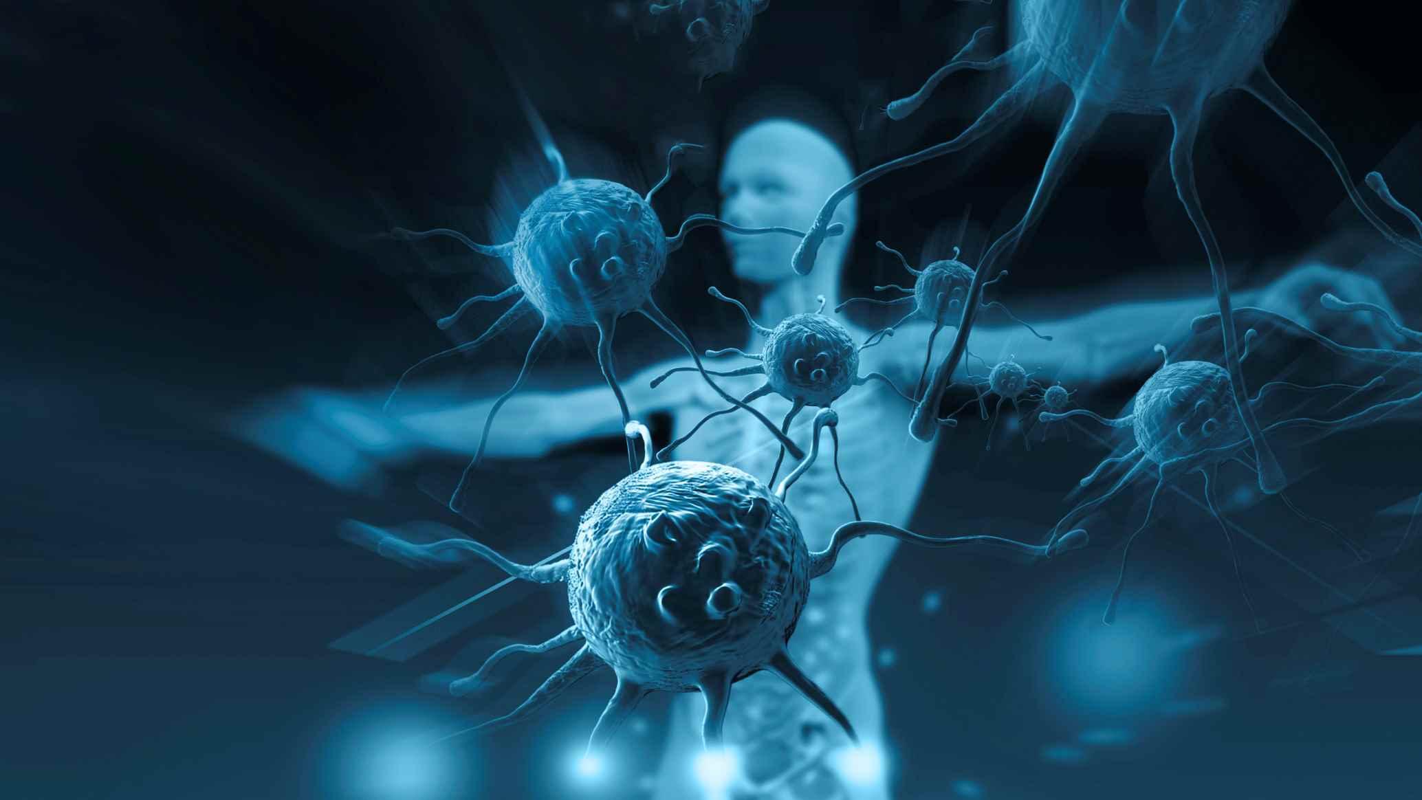 IMAGEM: Sistema imunológico