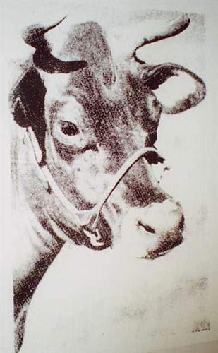 Cow  - Andy Warhol