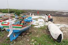 The Toilers of the Sea ..Living In Mutual Harmony With The Dhobi by firoze shakir photographerno1