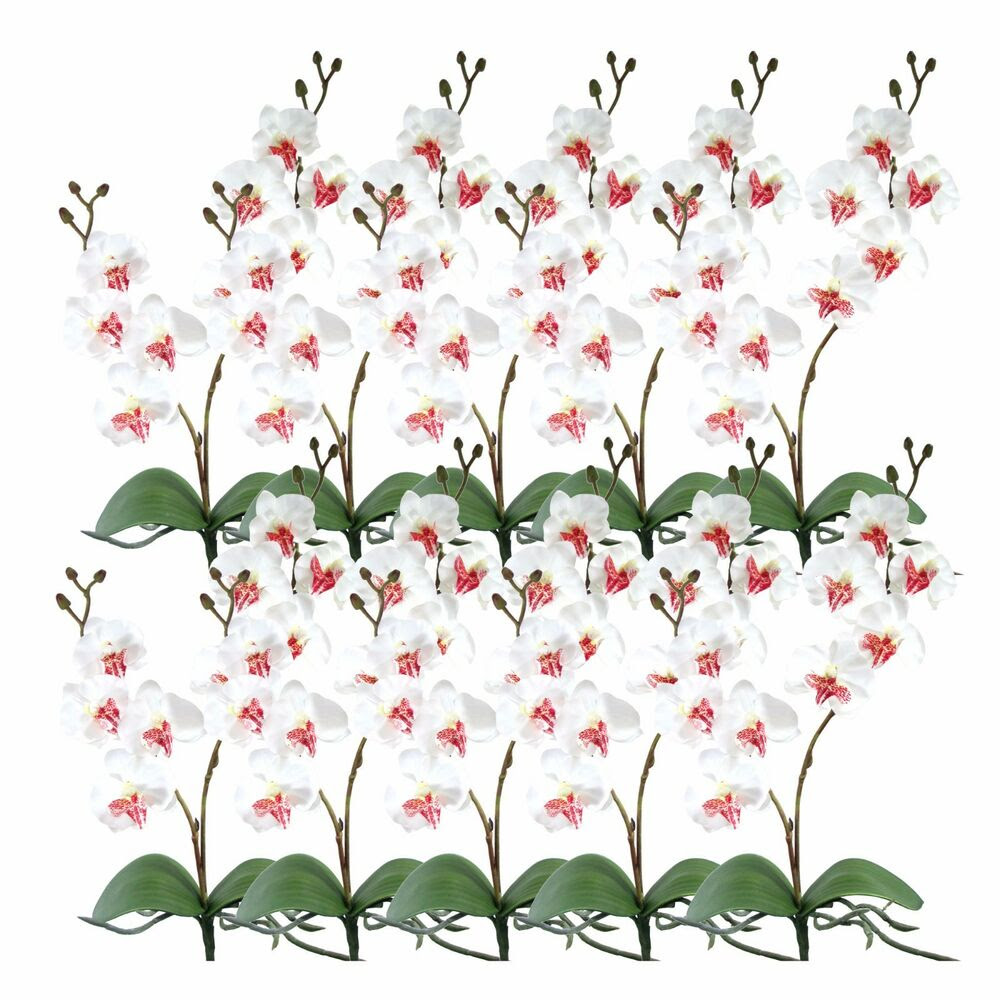 Pack of 10 17\u0026quot; Artificial Silk Butterfly Orchid Flower