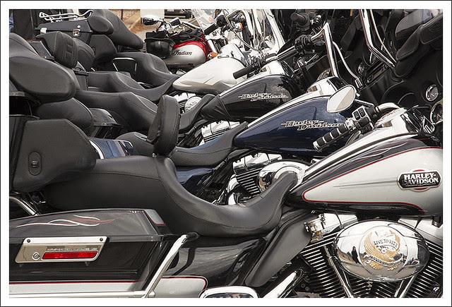 A Row Of Harleys