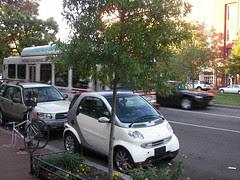 A Smart Car is smaller than a treebox.