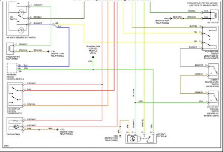 1998 Vw Jetta Wiring Diagram Wiring Diagram System Male Image Male Image Ediliadesign It