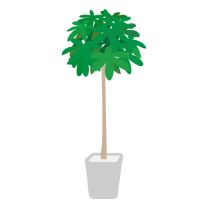 観葉植物 花植物イラスト Flode Illustration フロデイラスト