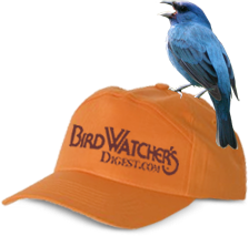 Visit Bird Watcher's Digest.com