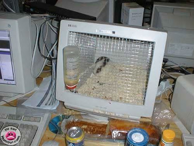 Ways To Reuse Old PC (3) 2