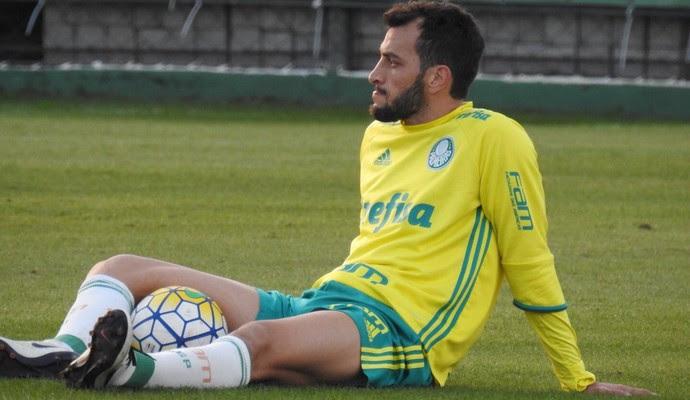Edu Dracena Palmeiras (Foto: Rodrigo Faber)