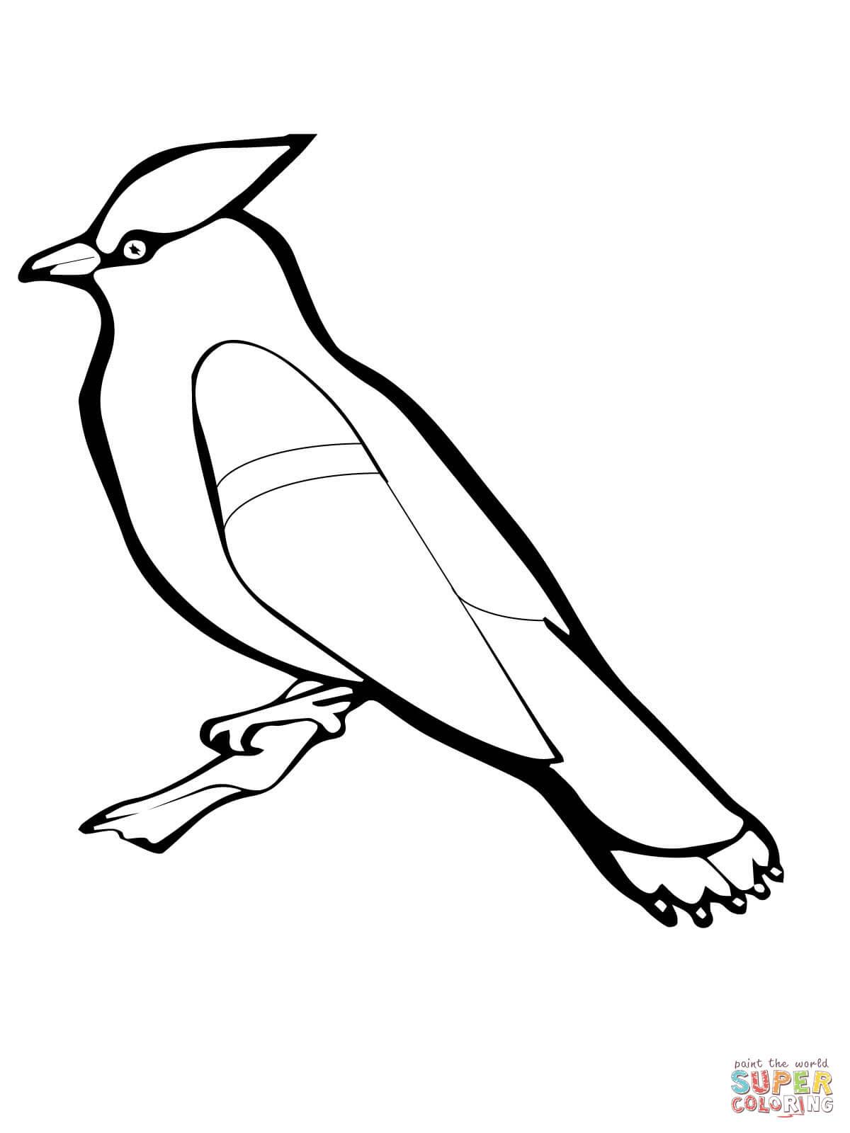 16 inspirational ausmalbilder kiwi vogel