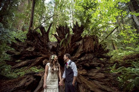 A Northern California redwoods wedding // Cecilia and