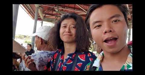 Vinpearl Nam Hội An có gì vui P1: khám phá vườn thú trên sông đầu tiên ở Việt Nam