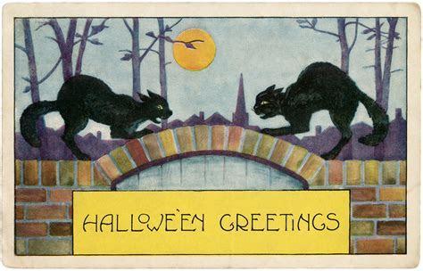 Free Halloween Black Cats Image!   The Graphics Fairy