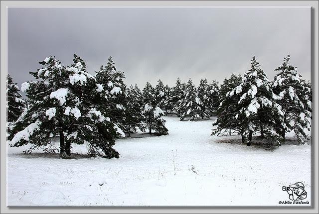 En busca de las primeras nieves (12)