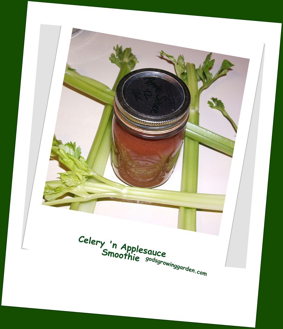 Celery'n Applesauce Smoothie, by Angie Ouellette-Tower for godsgrowinggarden.com