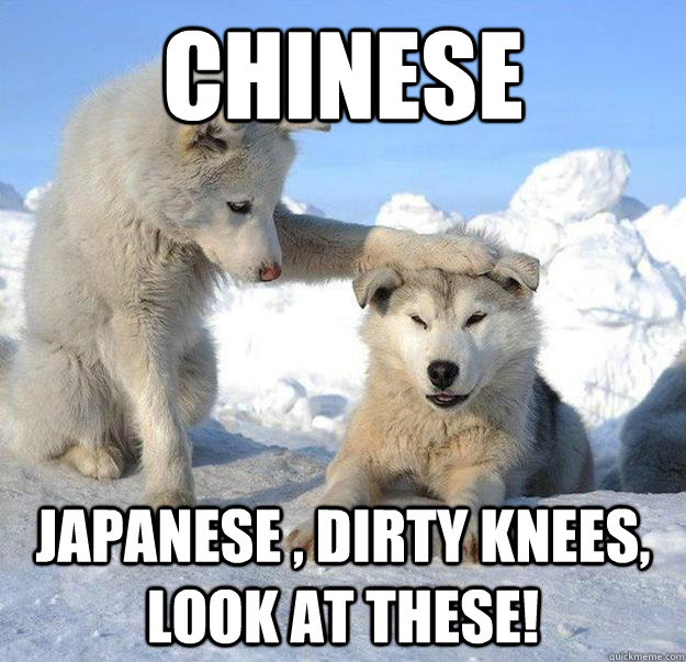 Chinese Japanese Dirty Knees Look At These Caring Husky