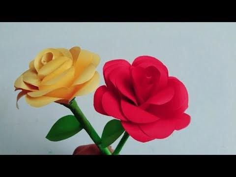 Contoh Teks Laporan Tentang Bunga Mawar Kumpulan Contoh Laporan