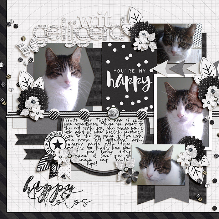 http://www.sweetshoppecommunity.com/gallery/showphoto.php?photo=414598&title=wit-geteigerd&cat=500