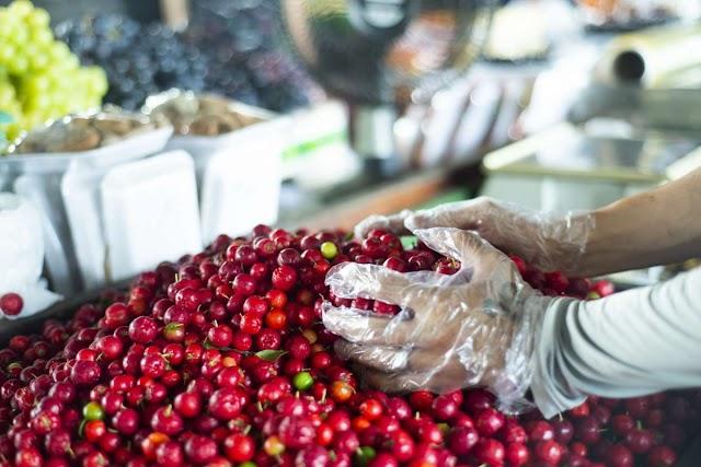 Preço da acerola cai -44,4% e fruta é vendida a R$ 2/kg na Ceasa Cariri