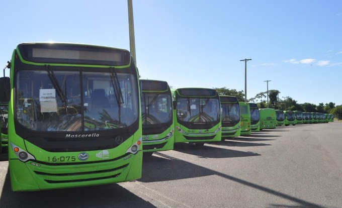 AUTOBUSES DE LA OMSA TRANSPORTARÁN GRATIS A NIÑOS QUE PRACTICAN BÉISBOL