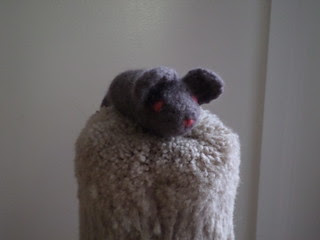 resistance rat (3)