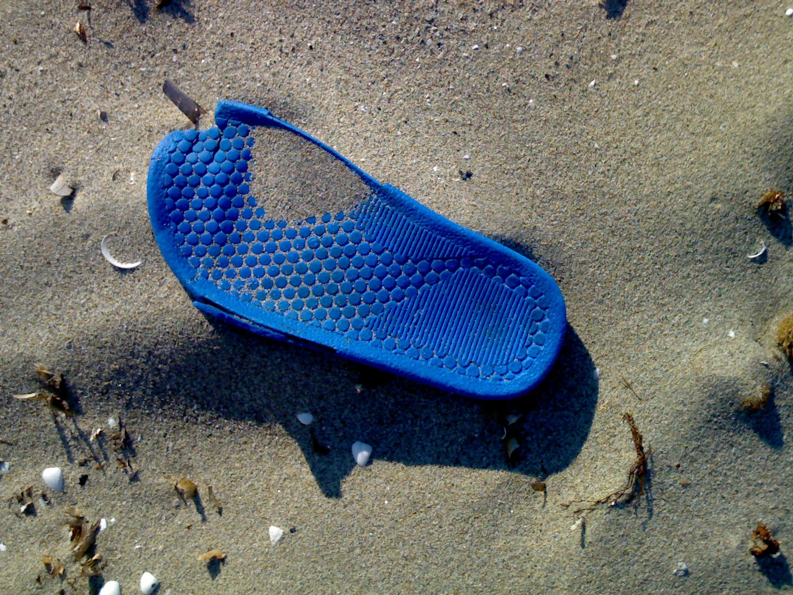 http://upload.wikimedia.org/wikipedia/commons/a/a7/Plastic_pollution_083.jpg
