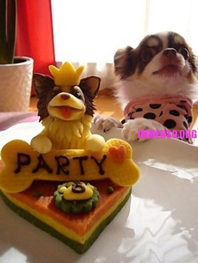 Torte Per Cani Torta Di Compleanno Con Limmagine Del
