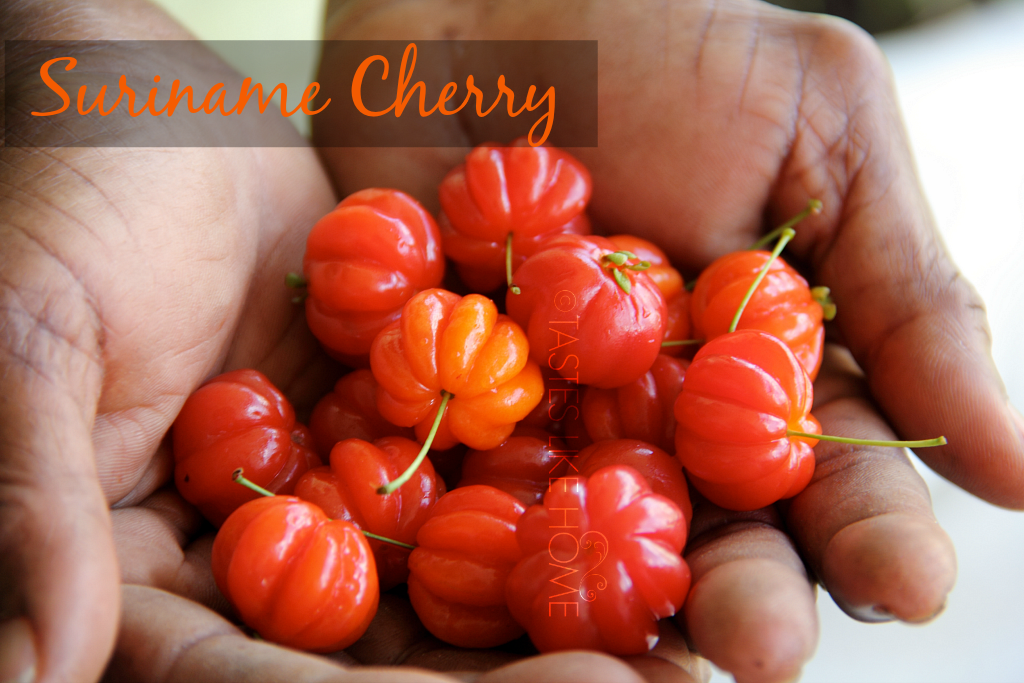 Suriname Cherry photo scherry3_zpsgacs4hgi.png