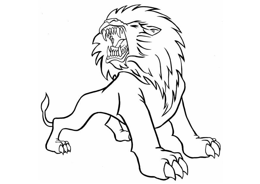 Dessiner Un Lion Facilement Az Coloriage