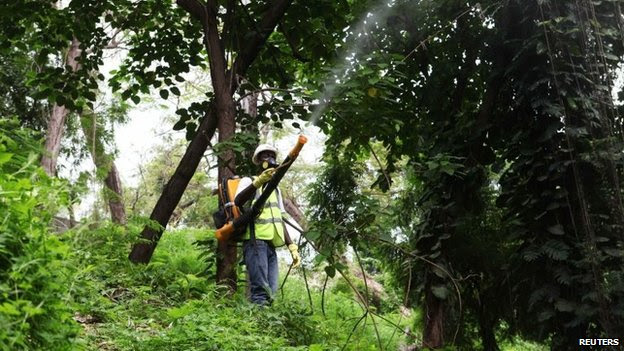 A man fumigates in Haiti, where the chikungunya virus has been spreading, in May 2014