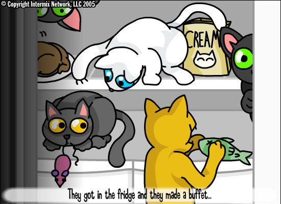 Kitty party!