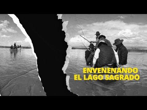 Lago Titicaca: Envenenando el lago sagrado (Video)