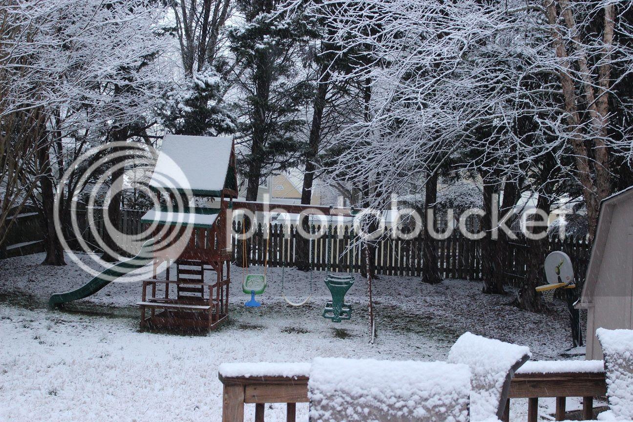 photo snow12_zps508c6c8e.jpg