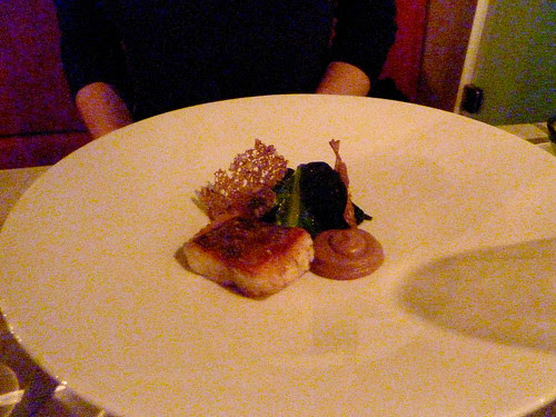 Seared pike-perch with celeriac, red wine, blue cheese from Kvibille and steamed lettuce