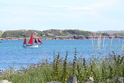 Red Sails on the Sound of Iona