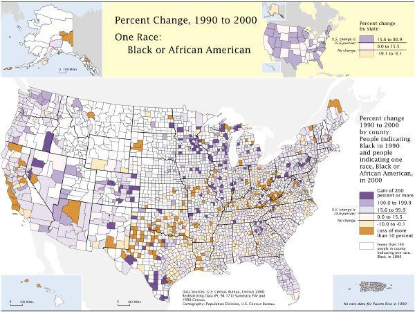 Image result for US Census Bureau jails