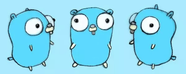 The most useful libraries for a golang developer