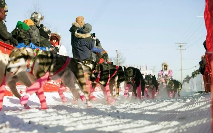 DeeDee Jonrowe leaves the chute at the start of the 45th Iditarod Trail Sled Dog Race in Fairbanks, Alaska.