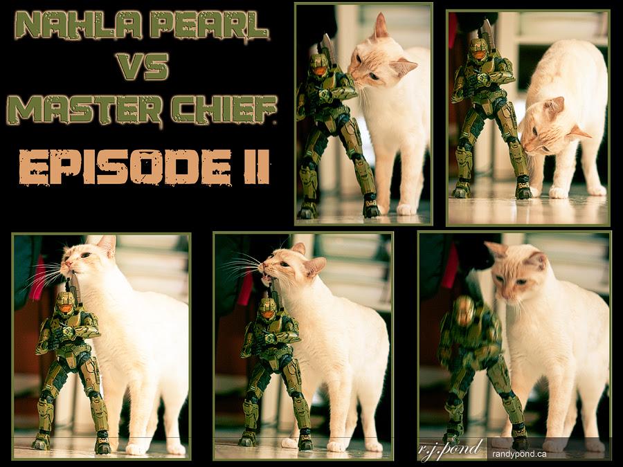 ~ 71/365 Nahla vs Master Chief ~